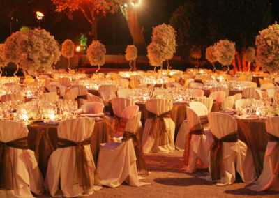 Sophisticated Wedding