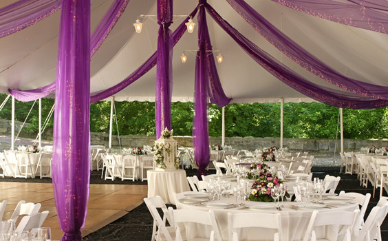 purple-streamers-inside-wedding-tent-564x350