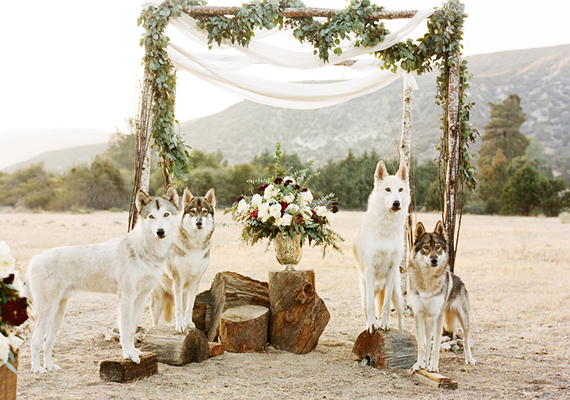 Rustic-winter-wedding-inspiration-21