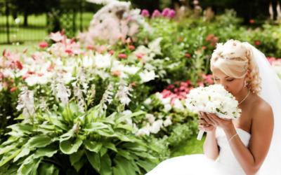 Los Viernes de Wedding Planners Coaching: las Flores de Temporada
